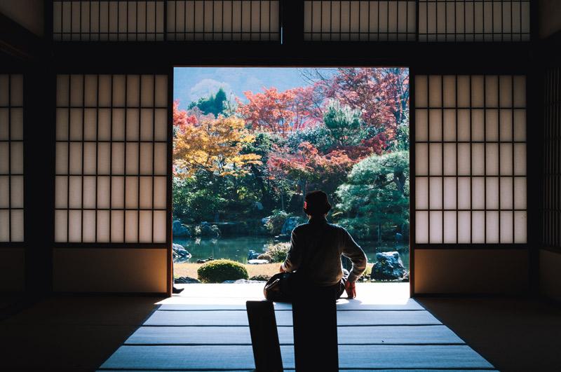 Otoño en Japón Ikigai 1