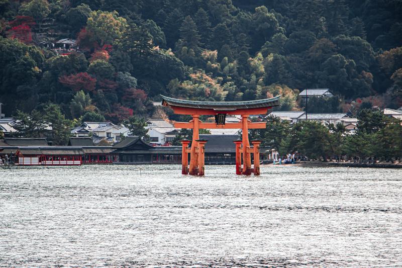 Que hacer en itsukushima